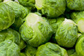 Brussel sprouts background texture of several uncooked Stock Images