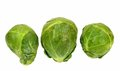 Brussel sprouts three on a white background Royalty Free Stock Photo