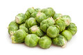 Brussel sprouts on white background Royalty Free Stock Photo