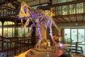 Brussels, Belgium - february 20, 2017. Giant dinosaur in Natural