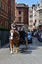 Brussels, Belgium - May 12, 2015: Driver in traditional horse carriage around the city of Brussels. Royalty Free Stock Photo