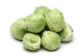 Brussels Sprout Royalty Free Stock Photo