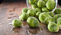 Brussels Sprouts Background Royalty Free Stock Photo