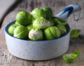 Brussels sprouts cabbage in a bowl Royalty Free Stock Photo
