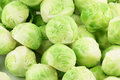 Brussels sprouts a pile of fresh green brassica oleracea background Royalty Free Stock Images