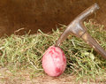 Brutal violence against eggs hay hammer Stock Image