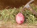 Brutal violence against eggs hay and hammer Royalty Free Stock Images
