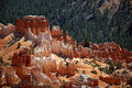 Bryce Canyon 2 Stock Images