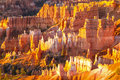 Bryce canyon as taken from sunrise point Royalty Free Stock Image