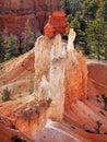 Bryce Canyon Hoodoos Closeup Royalty Free Stock Photo