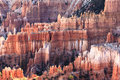 Bryce canyon hoodoos this image of was captured at national park at sunset the photograph was taken in the autumn Royalty Free Stock Images