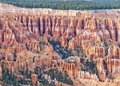 Bryce canyon national park hoodoos rock formations called in in utah united states of america Royalty Free Stock Photography