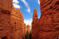Bryce Canyon National Park, Utah Royalty Free Stock Images