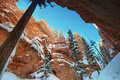 Bryce canyon panorama with snow in winter Stock Image
