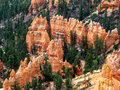 Bryce Canyon park Stock Image
