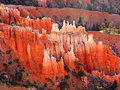 Bryce Canyon Sunrise Royalty Free Stock Photo