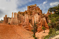 Bryce canyon ut hoodoos utah usa Stock Images