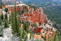 Bryce canyon utah usa Royaltyfri Bild