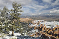 Bryce Canyon in winter from Inspiration Point Stock Photography