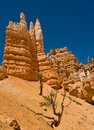 Bryce Hoodoos Stock Photography