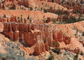 Bryce rock formations Royalty Free Stock Photography