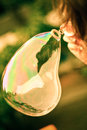 Bubble from bubble blower in girl hand blured italy forest in background Stock Photography