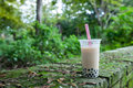 Bubble tea in the relax time Royalty Free Stock Photo