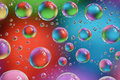 Picture : Bubbles abstract park particles