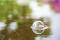 Bubbles caused by raining down. Royalty Free Stock Photo