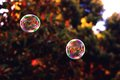 Picture : Bubbles blowing sunny social