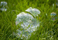 Bubbles on grass a couple large green Royalty Free Stock Image