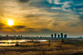 Bucharest landscape sunset view of aquatic ecosystem on old Vacaresti Lake Royalty Free Stock Photo