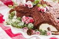 Buche de noel cake with christma decoration and cranberries Stock Images