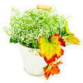Bucket of autumn leaves & wildflowers Royalty Free Stock Photo