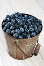 Bucket of blueberries on rustic table closeup a a farmhouse style vertical format shot from a high angle with shallow depth Royalty Free Stock Image