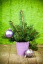 Bucket with fir tree and purple decorations Royalty Free Stock Photography