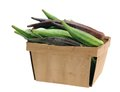 A bucket of okra abelmoschus isolated on white background Royalty Free Stock Photos