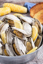 Bucket of steamed clams Royalty Free Stock Photo