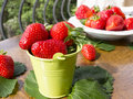 Bucket of strawberries fresh in a small decorative Royalty Free Stock Photo