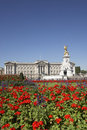 Buckingham Palace With Flowers In Foreground Royalty Free Stock Photo
