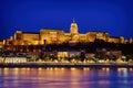 Budapest royal palace Royalty Free Stock Photo