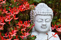 Buddha behind geraniums Stock Image