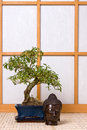 Buddha and bonsai Stock Photography
