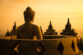 Buddha in Borobudur Temple at sunrise. Indonesia. Stock Photos