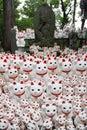 Buddha cats