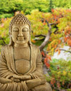 Buddha Garden Stock Images