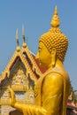 Buddha gold statue Royalty Free Stock Photo