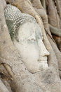 Buddha head ayuthaya stone in tree roots historical park thaialnd Stock Photos