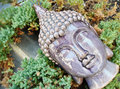 Buddha head budda on a shelf Royalty Free Stock Photography