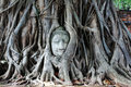 Buddha head Royalty Free Stock Photo